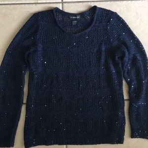 Navy Blue Sequin Knit Sweater